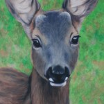 Deer study 1 2013 Oil on board 61x30cm