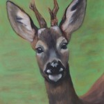 Deer study 2 2013 Oil on board 38x30cm