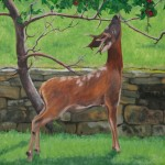 Deer study 7 2013 Oil on board 30x30cm